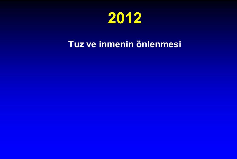 2012 Tuz ve inmenin önlenmesi