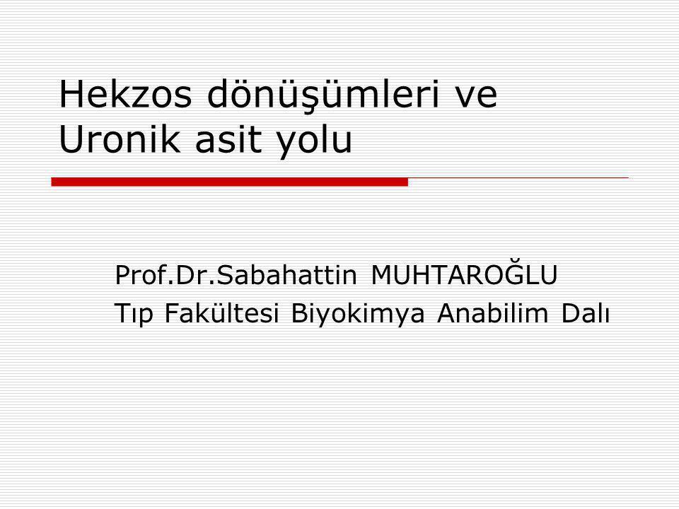 Hekzos dönüşümleri ve Uronik asit yolu Prof.Dr.Sabahattin MUHTAROĞLU Tıp Fakültesi Biyokimya Anabilim Dalı