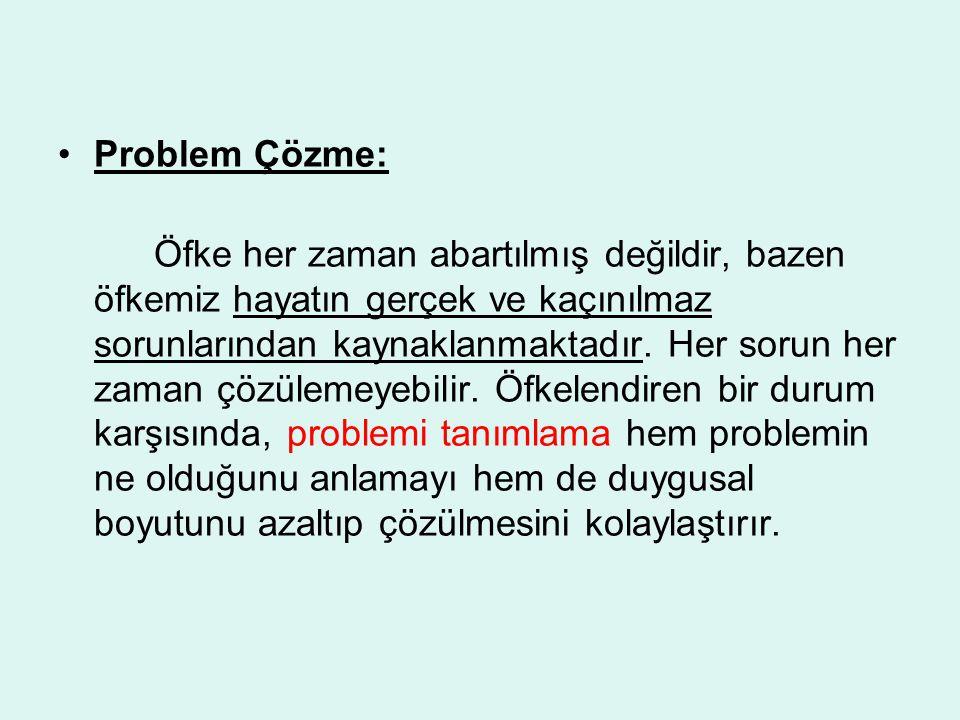 Problem Çözme: Öfke her zaman abartılmış değildir, bazen öfkemiz hayatın gerçek ve kaçınılmaz sorunlarından kaynaklanmaktadır. Her sorun her zaman çöz