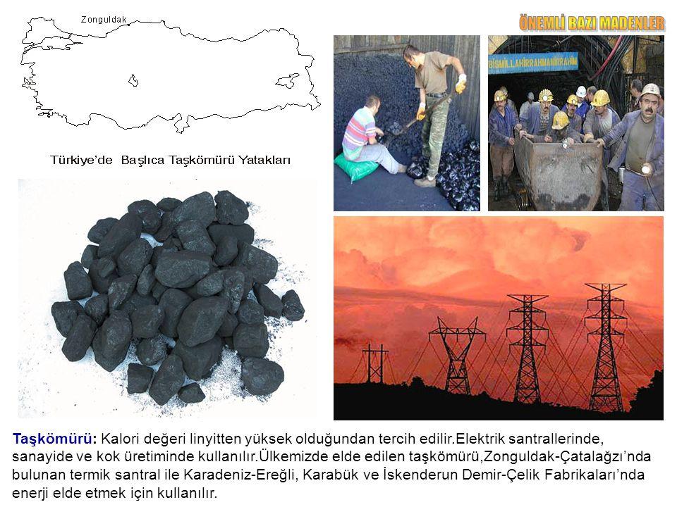 Taşkömürü: Kalori değeri linyitten yüksek olduğundan tercih edilir.Elektrik santrallerinde, sanayide ve kok üretiminde kullanılır.Ülkemizde elde edilen taşkömürü,Zonguldak-Çatalağzı'nda bulunan termik santral ile Karadeniz-Ereğli, Karabük ve İskenderun Demir-Çelik Fabrikaları'nda enerji elde etmek için kullanılır.