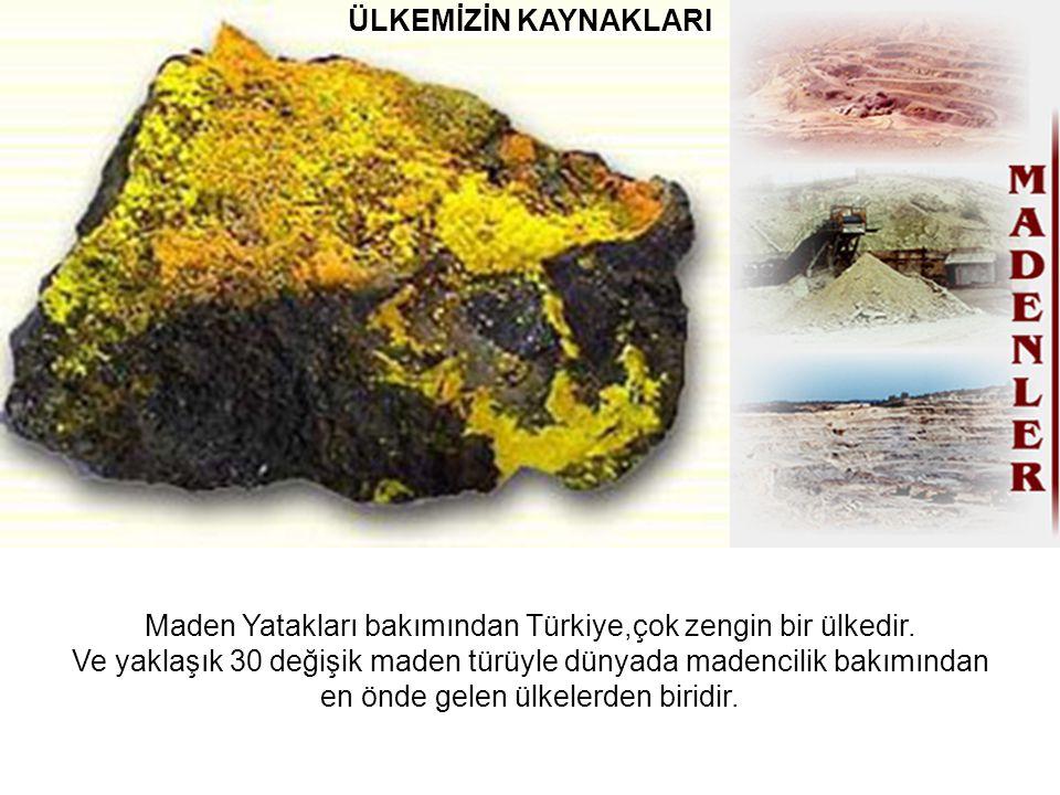 ÜLKEMİZİN KAYNAKLARI Maden Yatakları bakımından Türkiye,çok zengin bir ülkedir.