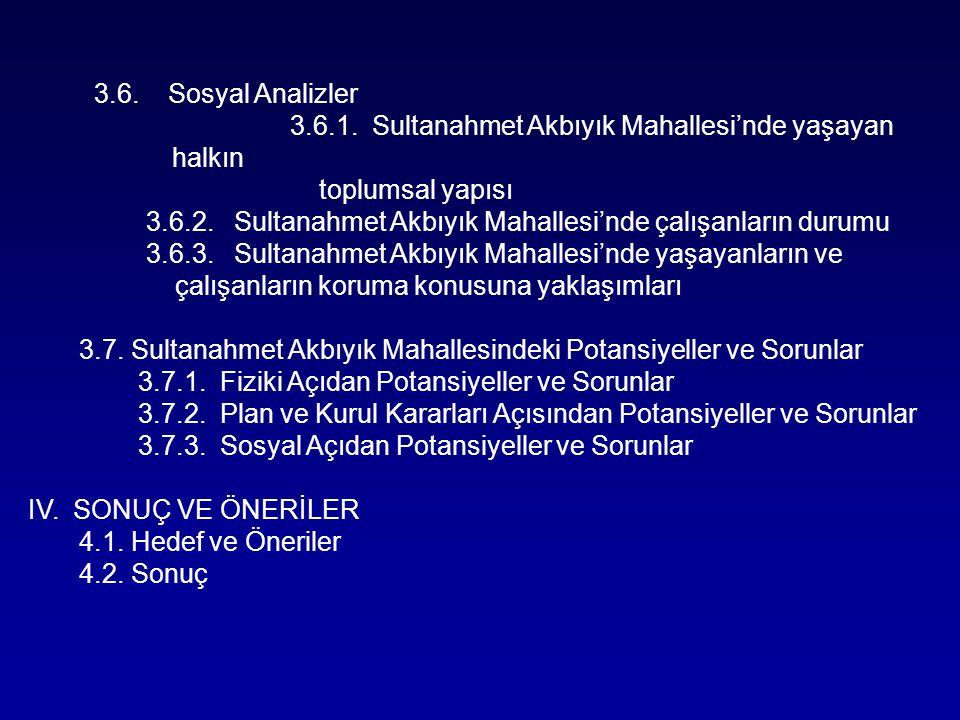 3.6. Sosyal Analizler 3.6.1. Sultanahmet Akbıyık Mahallesi'nde yaşayan halkın toplumsal yapısı 3.6.2. Sultanahmet Akbıyık Mahallesi'nde çalışanların d
