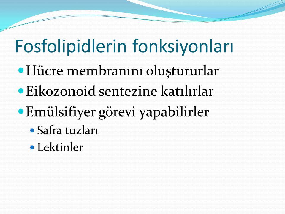 Fosfolipidler Fosfolipidler yapısında digliserid, bir fosfat grubu, gliserol ve kolin bulundurur.