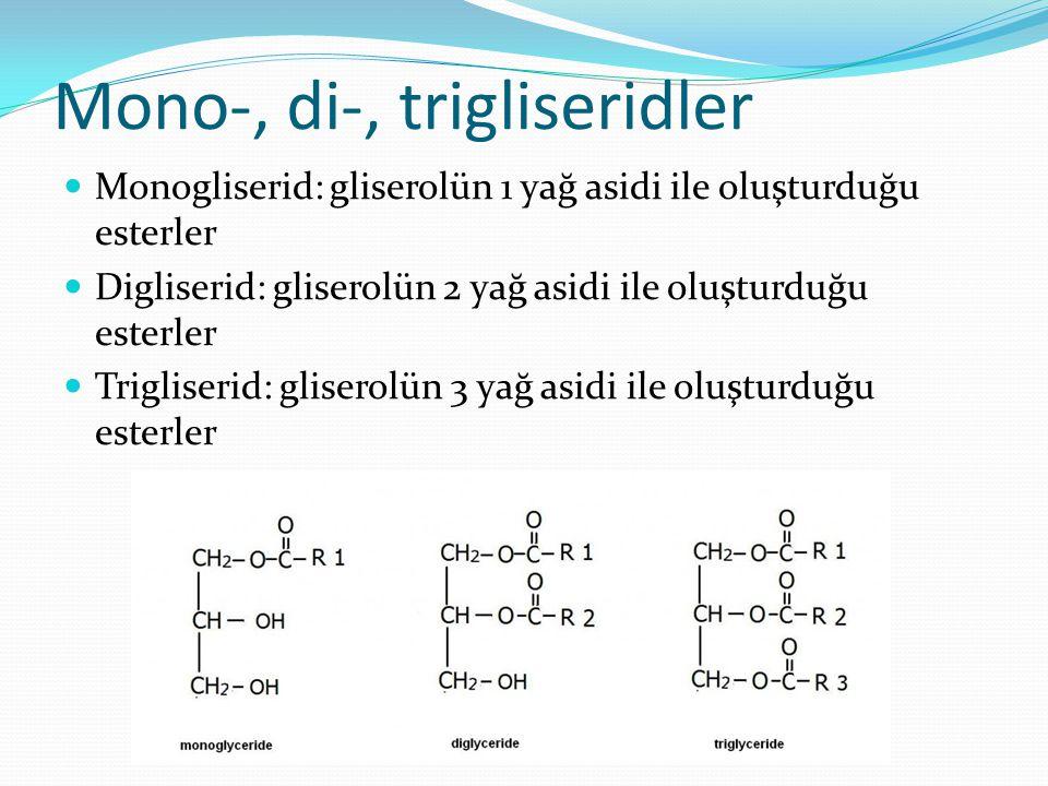 İçerik Trigliserdiler Beslenmedeki önemi Fosfolipidler Kolesterol Steroidler