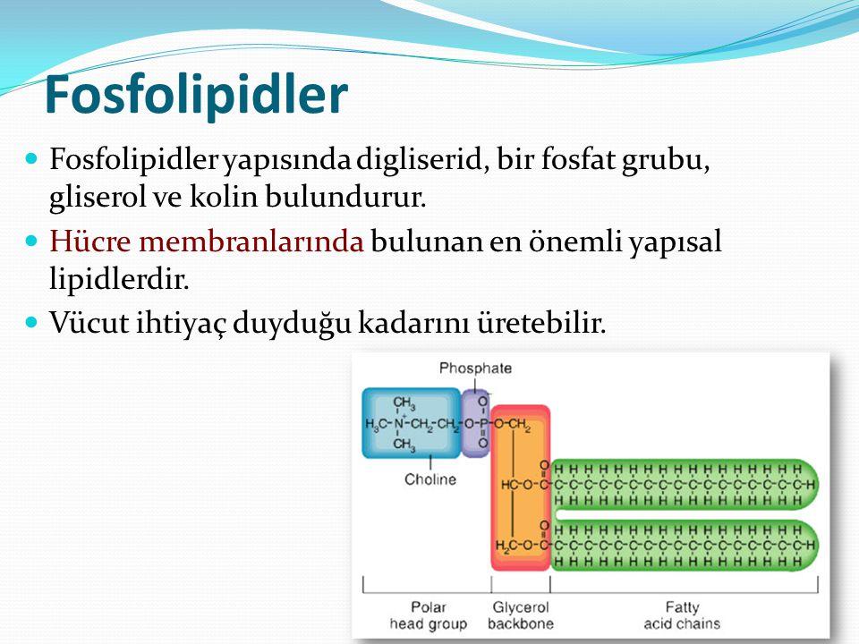 Mumlar Yağ asitlerinin gliserol yerine molekül ağırlığı daha yüksek olan alkoller ile esterleşmesi ile oluşurlar.