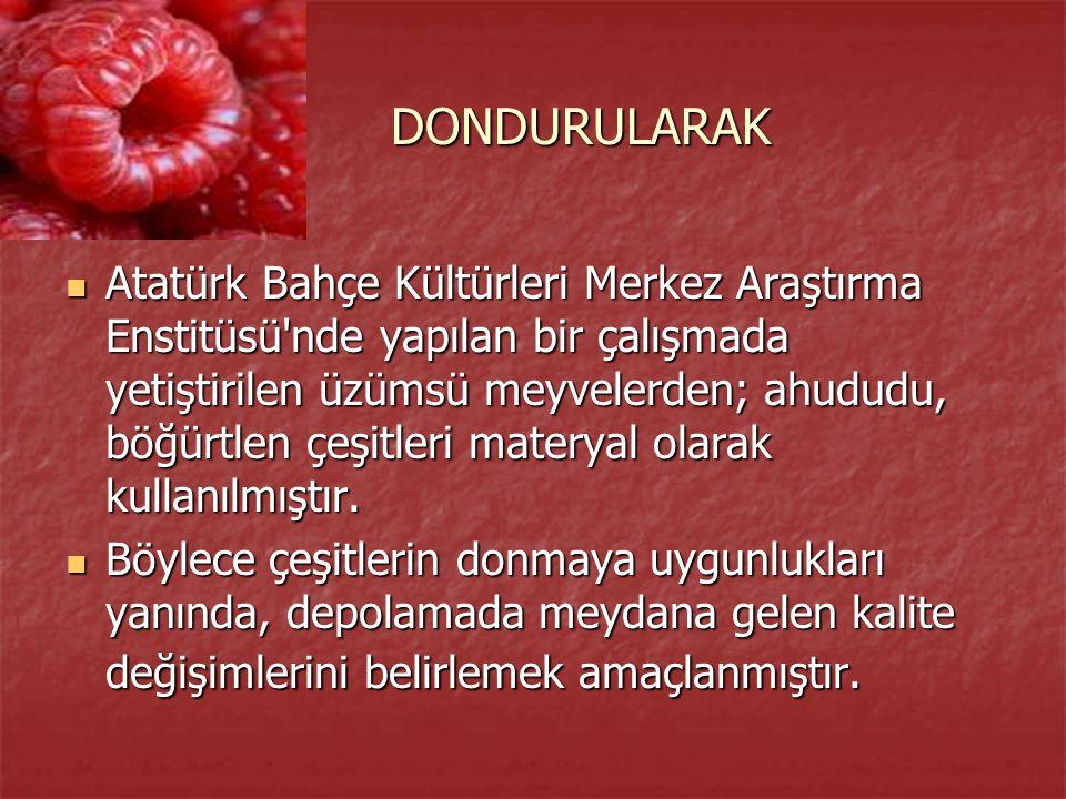 DONDURULARAK DONDURULARAK Atatürk Bahçe Kültürleri Merkez Araştırma Enstitüsü'nde yapılan bir çalışmada yetiştirilen üzümsü meyvelerden; ahududu, böğü