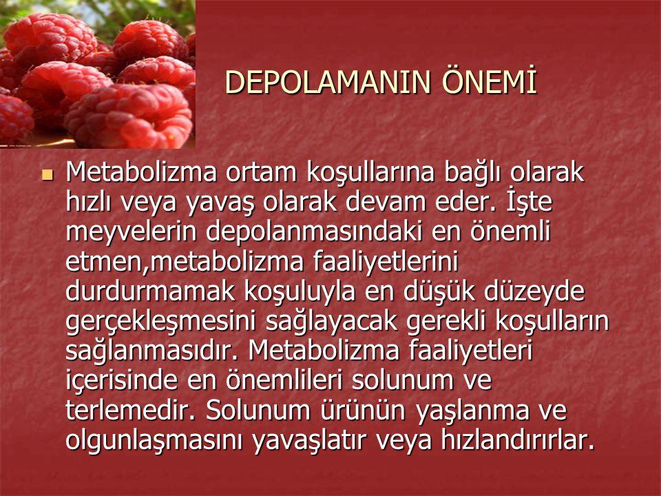 DEPOLAMANIN ÖNEMİ DEPOLAMANIN ÖNEMİ Metabolizma ortam koşullarına bağlı olarak hızlı veya yavaş olarak devam eder. İşte meyvelerin depolanmasındaki en