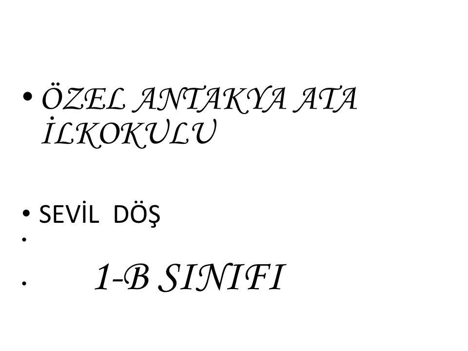 ÖZEL ANTAKYA ATA İLKOKULU SEVİL DÖŞ 1-B SINIFI