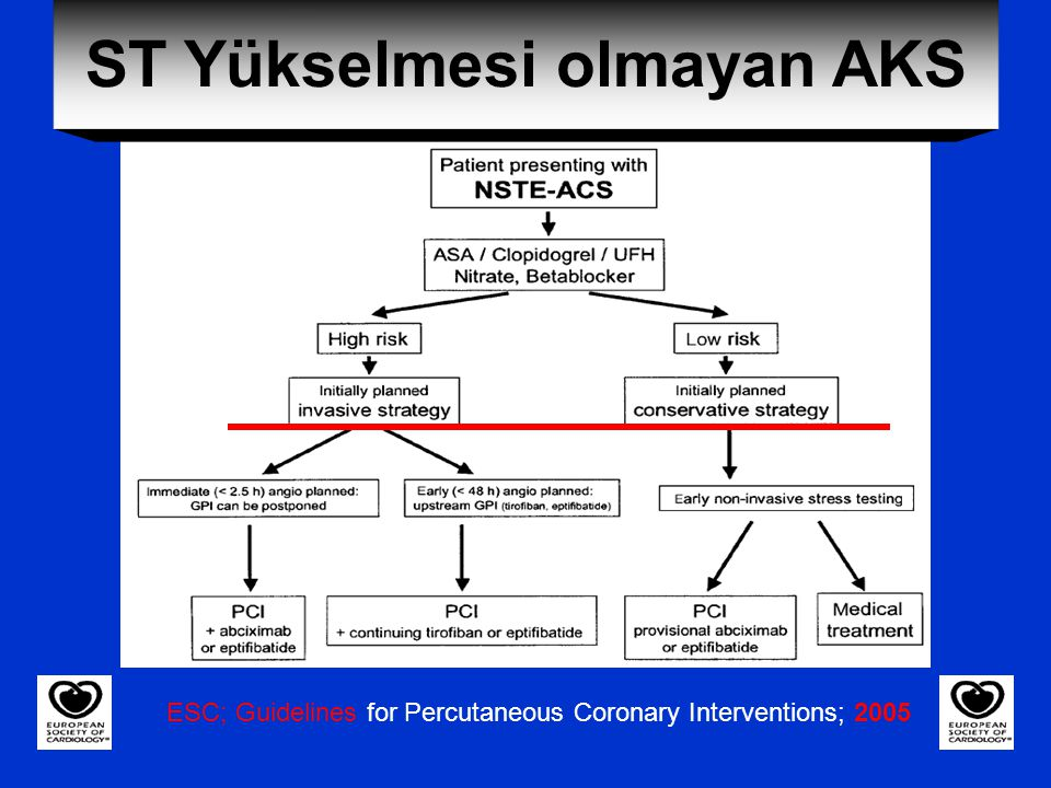 ESC; Guidelines for Percutaneous Coronary Interventions; 2005 ST Yükselmesi olmayan AKS