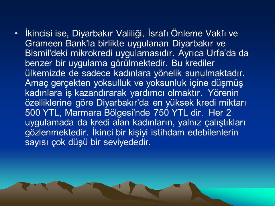 İkincisi ise, Diyarbakır Valiliği, İsrafı Önleme Vakfı ve Grameen Bank'la birlikte uygulanan Diyarbakır ve Bismil'deki mikrokredi uygulamasıdır. Ayrıc