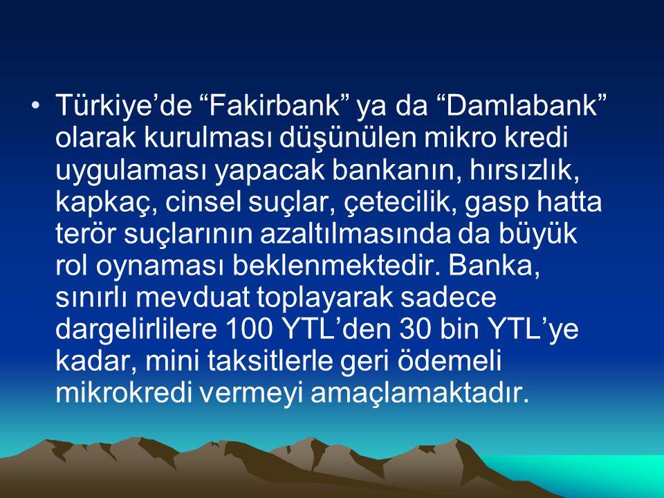 """Türkiye'de """"Fakirbank"""" ya da """"Damlabank"""" olarak kurulması düşünülen mikro kredi uygulaması yapacak bankanın, hırsızlık, kapkaç, cinsel suçlar, çetecil"""