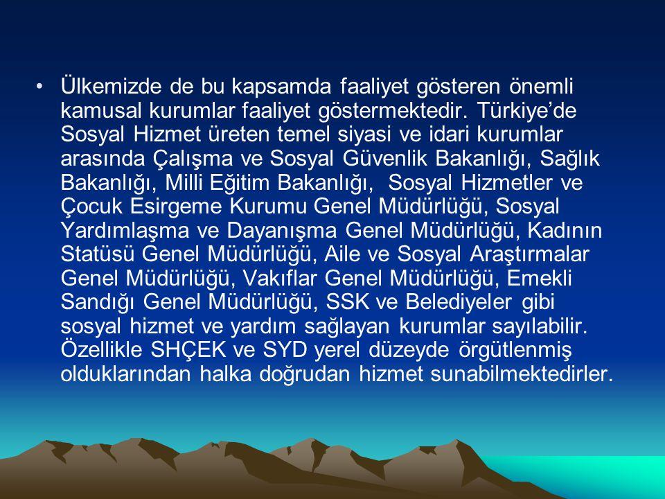 Ülkemizde de bu kapsamda faaliyet gösteren önemli kamusal kurumlar faaliyet göstermektedir. Türkiye'de Sosyal Hizmet üreten temel siyasi ve idari kuru