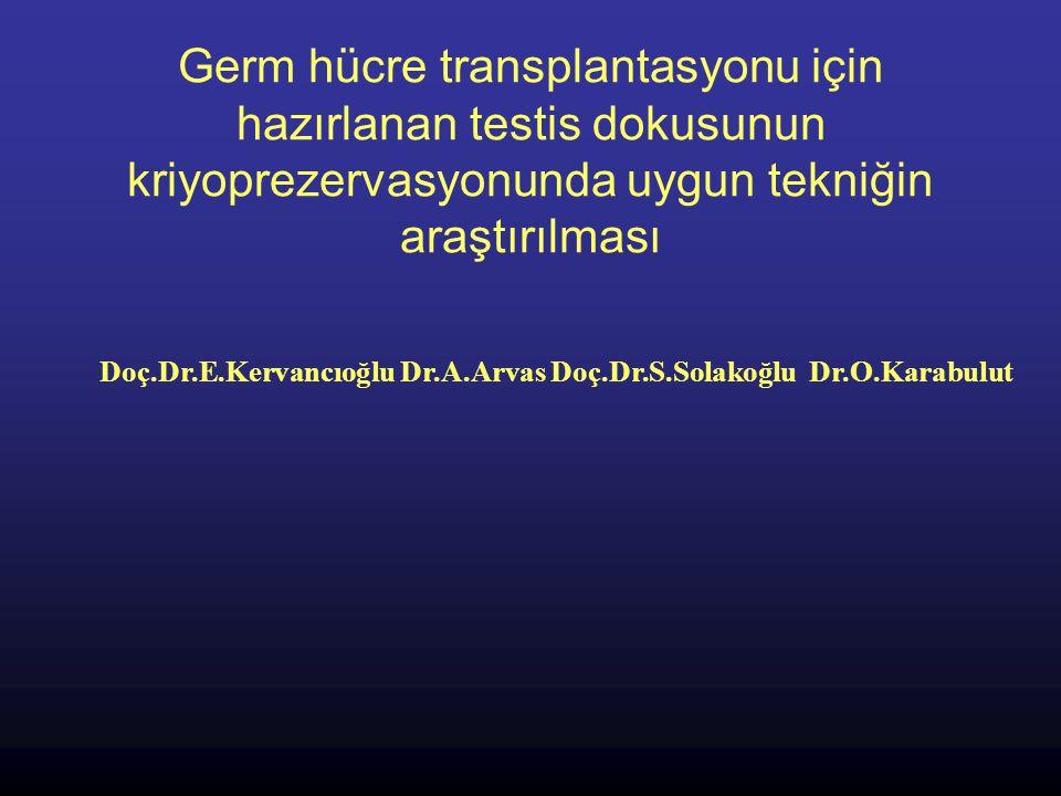 Germ hücre transplantasyonu için hazırlanan testis dokusunun kriyoprezervasyonunda uygun tekniğin araştırılması Doç.Dr.E.Kervancıoğlu Dr.A.Arvas Doç.D