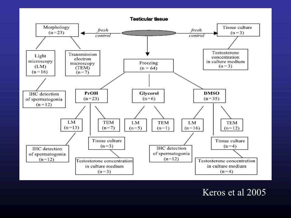 Keros et al 2005