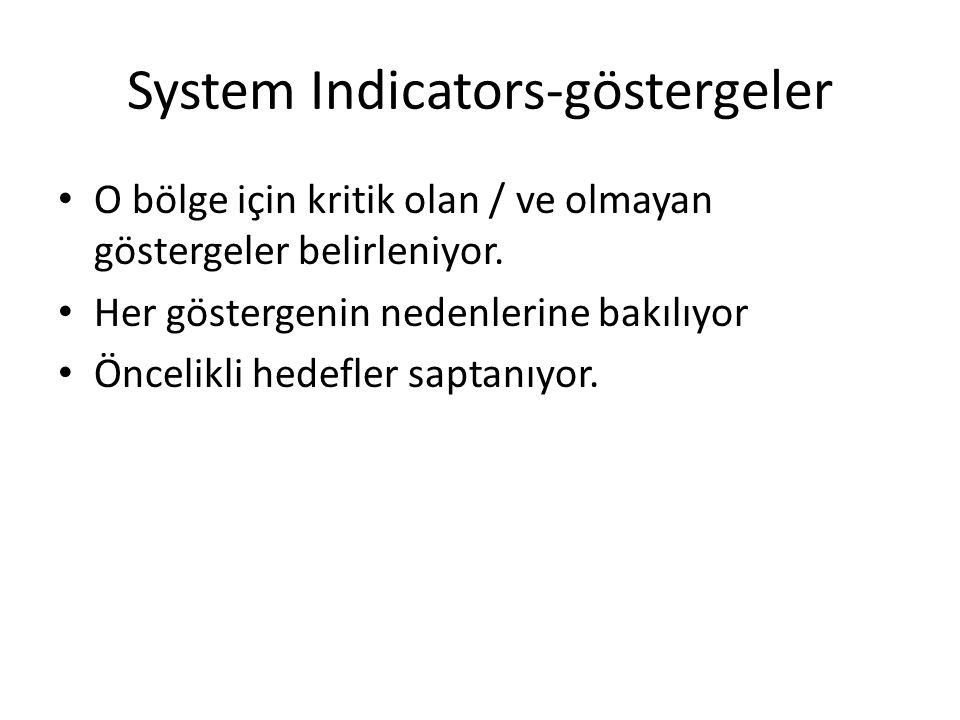 System Indicators-göstergeler O bölge için kritik olan / ve olmayan göstergeler belirleniyor. Her göstergenin nedenlerine bakılıyor Öncelikli hedefler