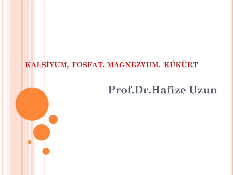 KALSİYUM, FOSFAT, MAGNEZYUM, KÜKÜRT Prof.Dr.Hafize Uzun
