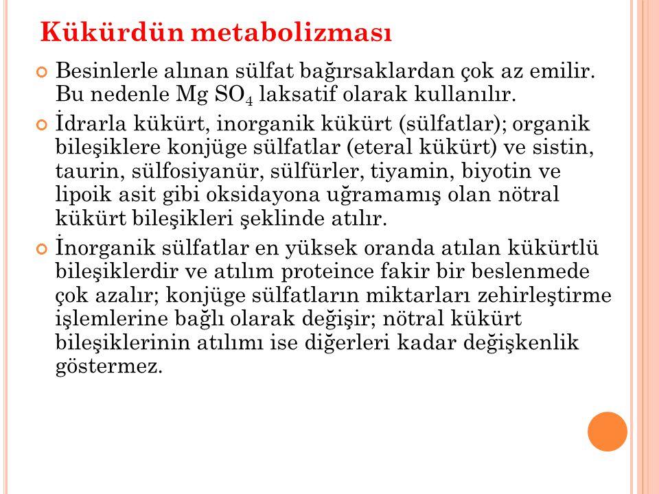 Kükürdün metabolizması Besinlerle alınan sülfat bağırsaklardan çok az emilir. Bu nedenle Mg SO 4 laksatif olarak kullanılır. İdrarla kükürt, inorganik