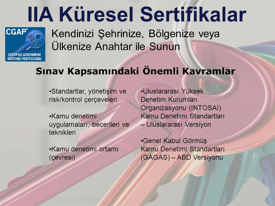 IIA Küresel Sertifikalar Kendinizi Şehrinize, Bölgenize veya Ülkenize Anahtar ile Sunun Sınav Kapsamındaki Önemli Kavramlar Standartlar, yönetişim ve risk/kontrol çerçeveleri Kamu denetimi uygulamaları, becerileri ve teknikleri Kamu denetimi ortamı (çevresi) Uluslararası Yüksek Denetim Kurumları Organizasyonu (INTOSAI) Kamu Denetimi Standartları – Uluslararası Versiyon Genel Kabul Görmüş Kamu Denetimi Standartları (GAGAS) – ABD Versiyonu