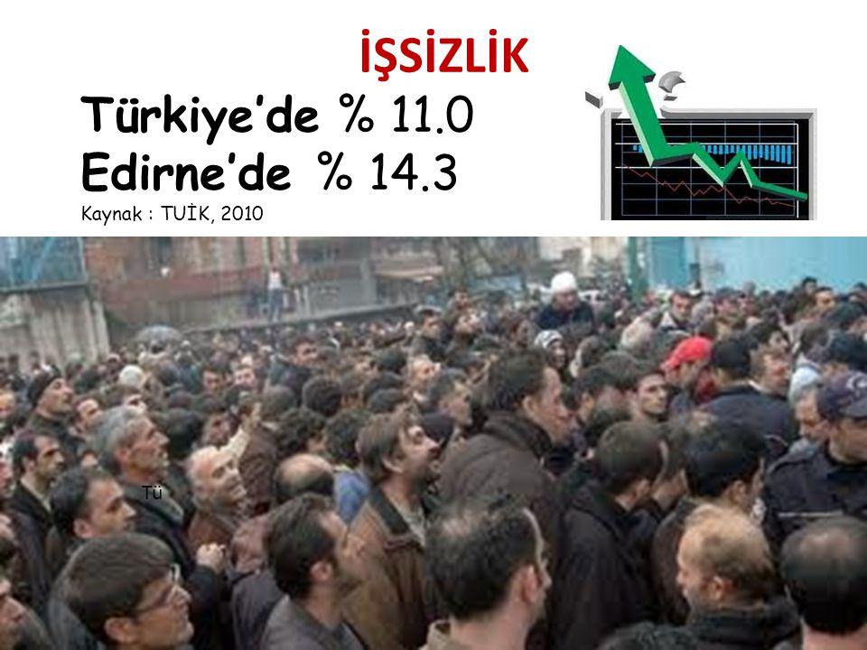 İŞSİZLİK Türkiye'de % 11.0 Edirne'de % 14.3 Kaynak : TUİK, 2010 Tü