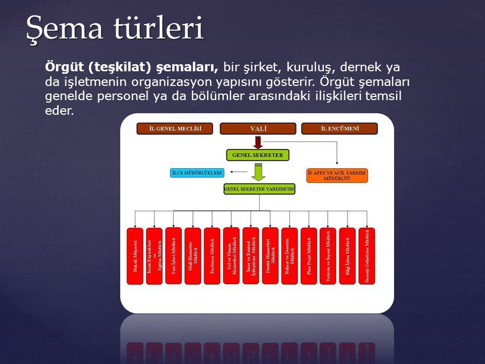 Şema türleri Örgüt (teşkilat) şemaları, bir şirket, kuruluş, dernek ya da işletmenin organizasyon yapısını gösterir. Örgüt şemaları genelde personel y