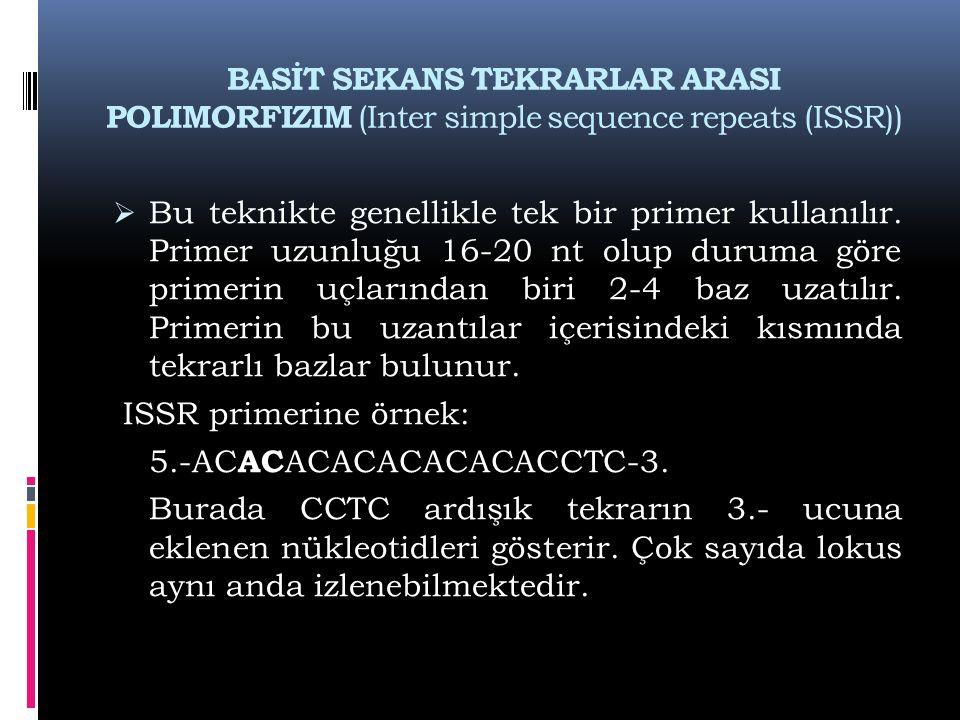 BASİT SEKANS TEKRARLAR ARASI POLIMORFIZIM (Inter simple sequence repeats (ISSR))  Bu teknikte genellikle tek bir primer kullanılır. Primer uzunluğu 1