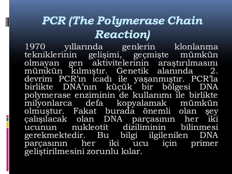 PCR (The Polymerase Chain Reaction) 1970 yıllarında genlerin klonlanma tekniklerinin gelişimi, geçmişte mümkün olmayan gen aktivitelerinin araştırılma