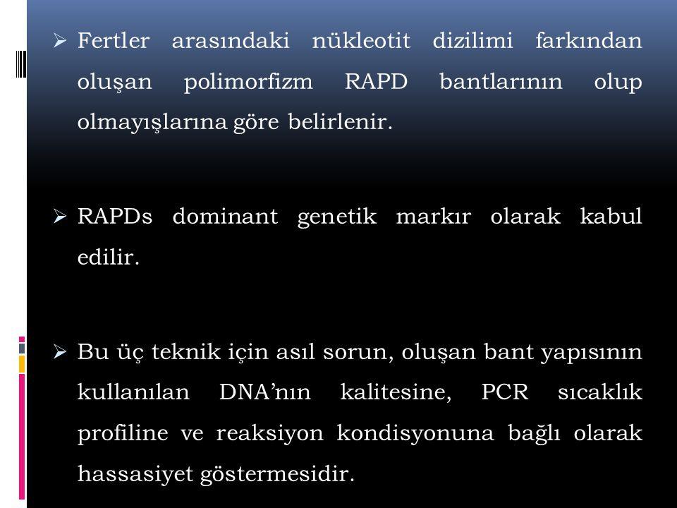  Fertler arasındaki nükleotit dizilimi farkından oluşan polimorfizm RAPD bantlarının olup olmayışlarına göre belirlenir.  RAPDs dominant genetik mar