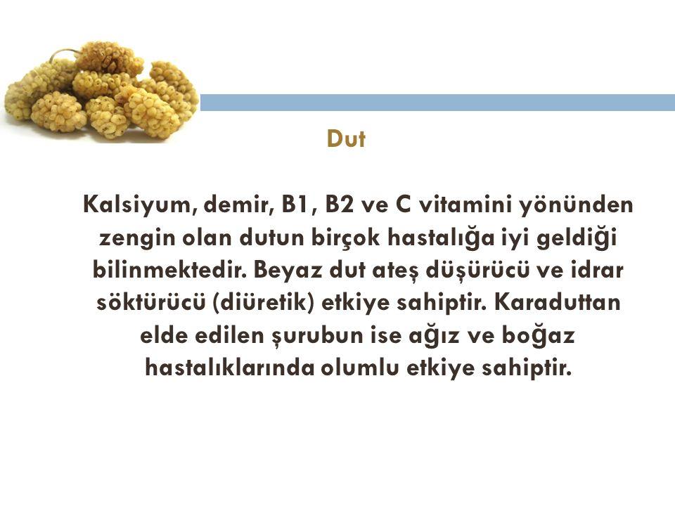 Dut Kalsiyum, demir, B1, B2 ve C vitamini yönünden zengin olan dutun birçok hastalı ğ a iyi geldi ğ i bilinmektedir. Beyaz dut ateş düşürücü ve idrar