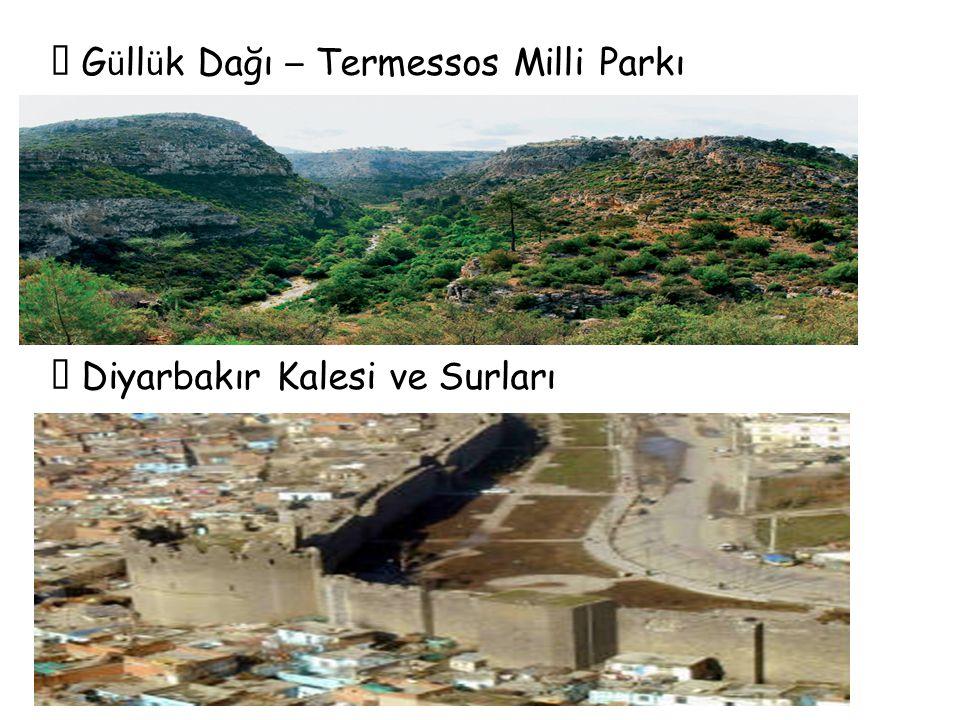  G ü ll ü k Dağı – Termessos Milli Parkı  Diyarbakır Kalesi ve Surları