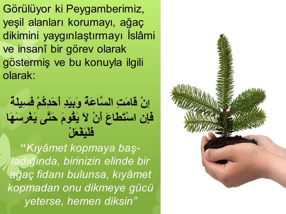 Görülüyor ki Peygamberimiz, yeşil alanları korumayı, ağaç dikimini yaygınlaştırmayı İslâmi ve insanî bir görev olarak göstermiş ve bu konuyla ilgili o