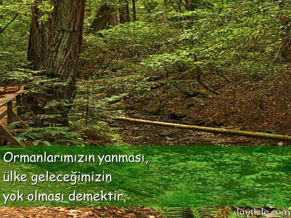 Ormanlarımız ülkemizin oksijen kaynağıdır. Ormanlar yağmurların yağmasını sağlar! Toprağın kaymasını önler!
