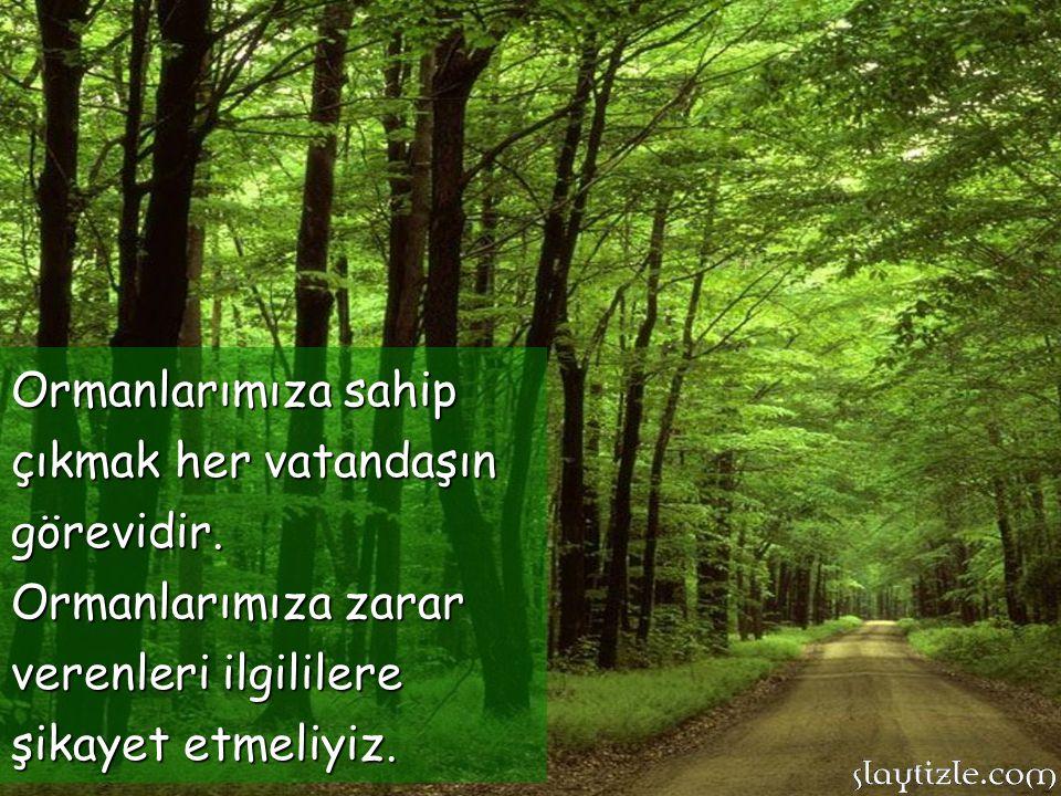 Ormanlarımızın yanması, ülke geleceğimizin yok olması demektir.