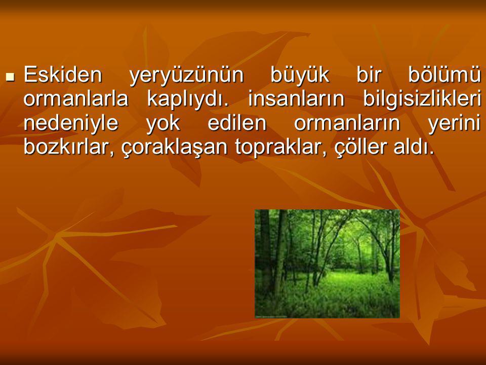 Eskiden yeryüzünün büyük bir bölümü ormanlarla kaplıydı. insanların bilgisizlikleri nedeniyle yok edilen ormanların yerini bozkırlar, çoraklaşan topra