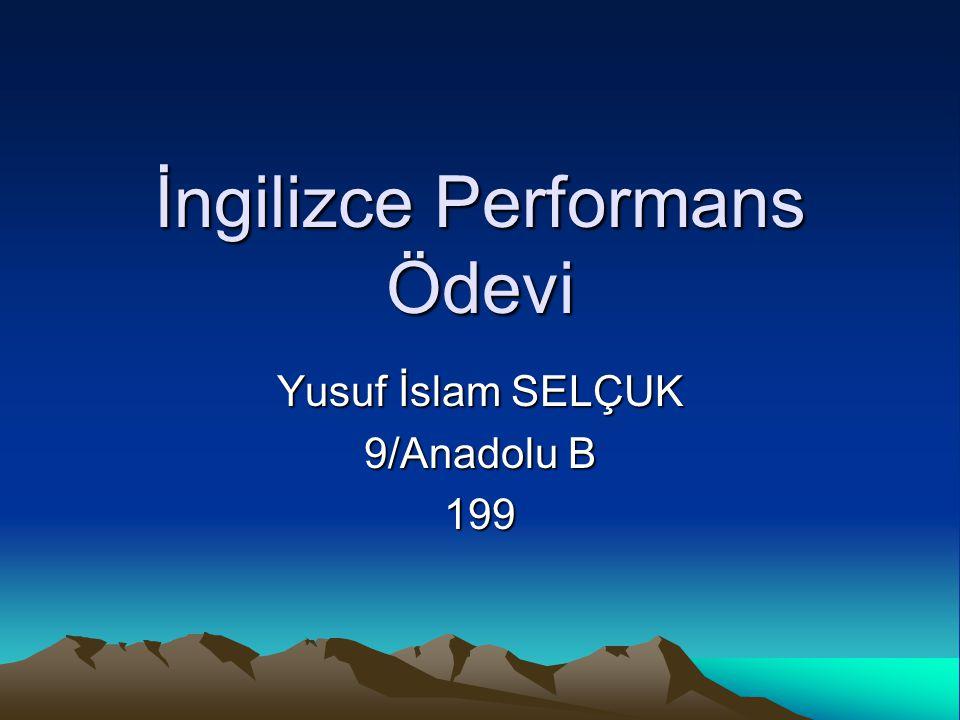 İngilizce Performans Ödevi Yusuf İslam SELÇUK 9/Anadolu B 199