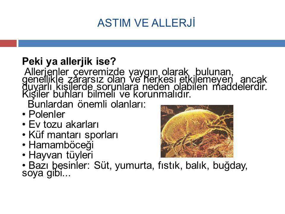 ASTIM VE ALLERJİ Peki ya allerjik ise? Allerjenler çevremizde yaygın olarak bulunan, genellikle zararsız olan ve herkesi etkilemeyen ancak duyarlı kiş