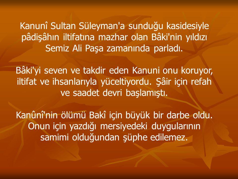 Kanunî Sultan Süleyman'a sunduğu kasidesiyle pâdişâhın iltifatına mazhar olan Bâki'nin yıldızı Semiz Ali Paşa zamanında parladı. Bâki'yi seven ve takd