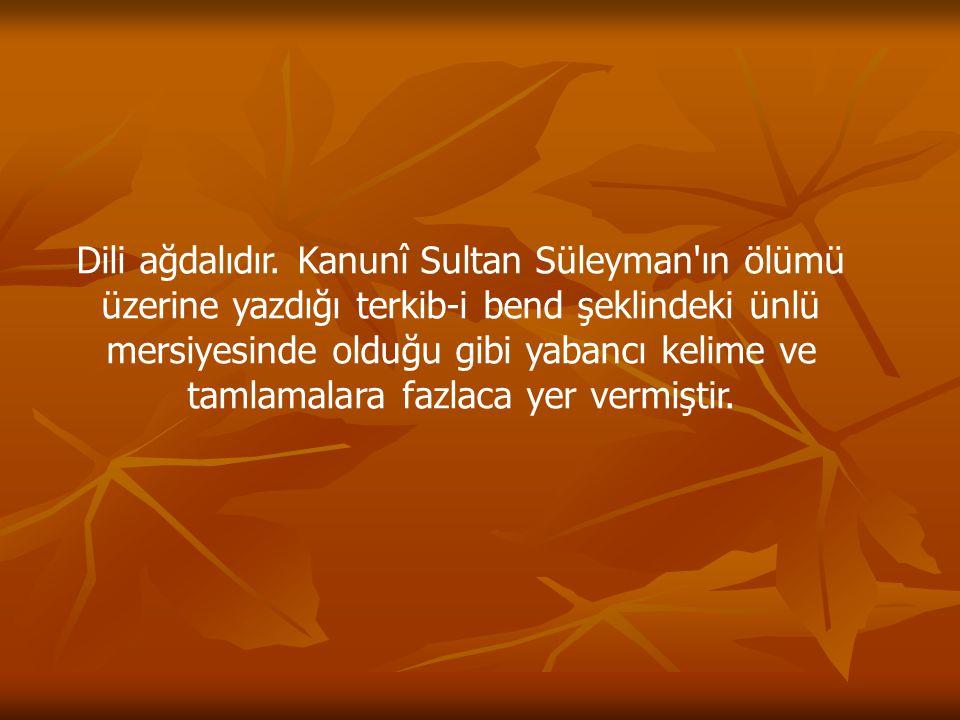 Dili ağdalıdır. Kanunî Sultan Süleyman'ın ölümü üzerine yazdığı terkib-i bend şeklindeki ünlü mersiyesinde olduğu gibi yabancı kelime ve tamlamalara f