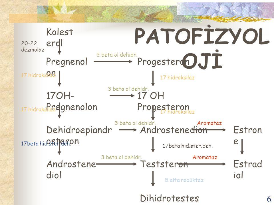 6 PATOFİZYOL OJİ Kolest erol Pregnenol on 17OH- Pregnenolon Dehidroepiandr osteron Androstene diol Progesteron 17 OH Progesteron Androstenedion Testst