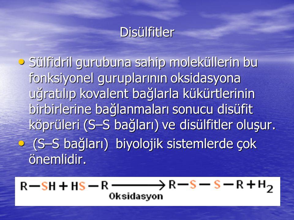 Disülfitler Sülfidril gurubuna sahip moleküllerin bu fonksiyonel guruplarının oksidasyona uğratılıp kovalent bağlarla kükürtlerinin birbirlerine bağlanmaları sonucu disüfit köprüleri (S–S bağları) ve disülfitler oluşur.