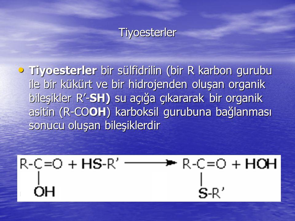 Tiyoesterler Tiyoesterler bir sülfidrilin (bir R karbon gurubu ile bir kükürt ve bir hidrojenden oluşan organik bileşikler R'-SH) su açığa çıkararak bir organik asitin (R-COOH) karboksil gurubuna bağlanması sonucu oluşan bileşiklerdir Tiyoesterler bir sülfidrilin (bir R karbon gurubu ile bir kükürt ve bir hidrojenden oluşan organik bileşikler R'-SH) su açığa çıkararak bir organik asitin (R-COOH) karboksil gurubuna bağlanması sonucu oluşan bileşiklerdir