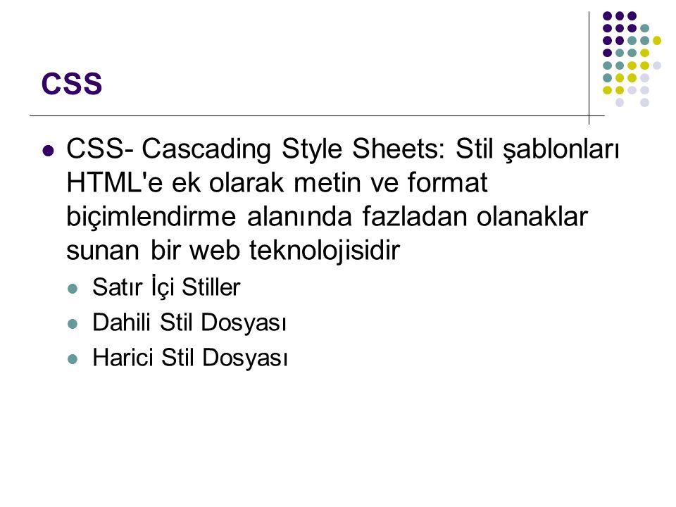 CSS CSS- Cascading Style Sheets: Stil şablonları HTML'e ek olarak metin ve format biçimlendirme alanında fazladan olanaklar sunan bir web teknolojisid