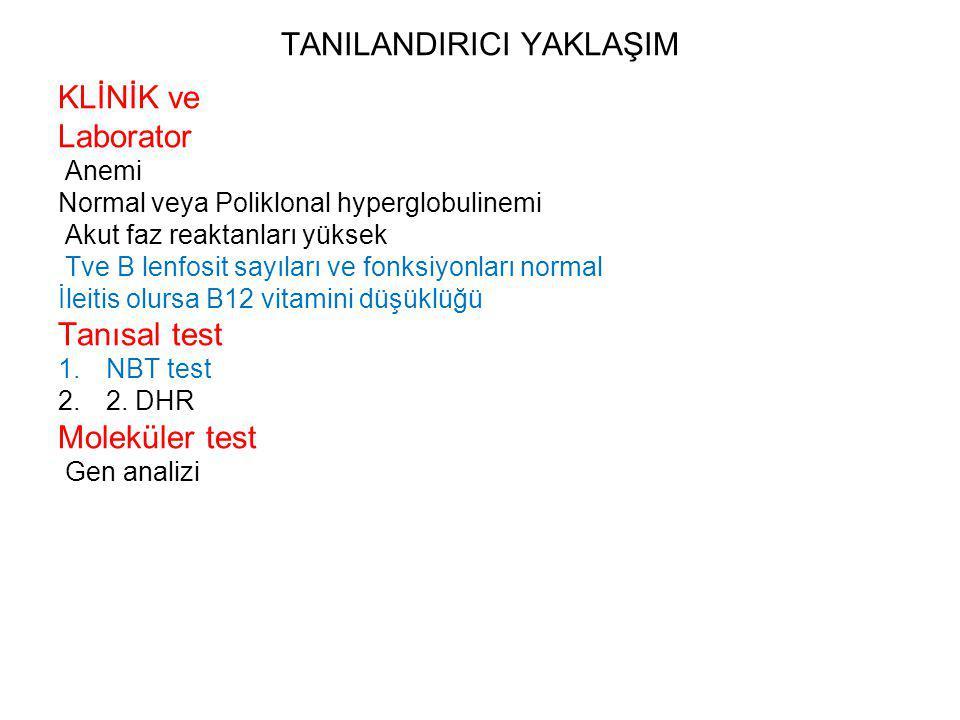 TANILANDIRICI YAKLAŞIM KLİNİK ve Laborator Anemi Normal veya Poliklonal hyperglobulinemi Akut faz reaktanları yüksek Tve B lenfosit sayıları ve fonksiyonları normal İleitis olursa B12 vitamini düşüklüğü Tanısal test 1.NBT test 2.2.