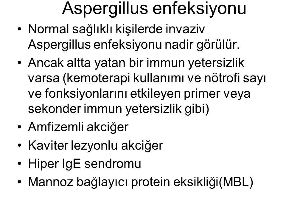 Aspergillus enfeksiyonu Normal sağlıklı kişilerde invaziv Aspergillus enfeksiyonu nadir görülür.