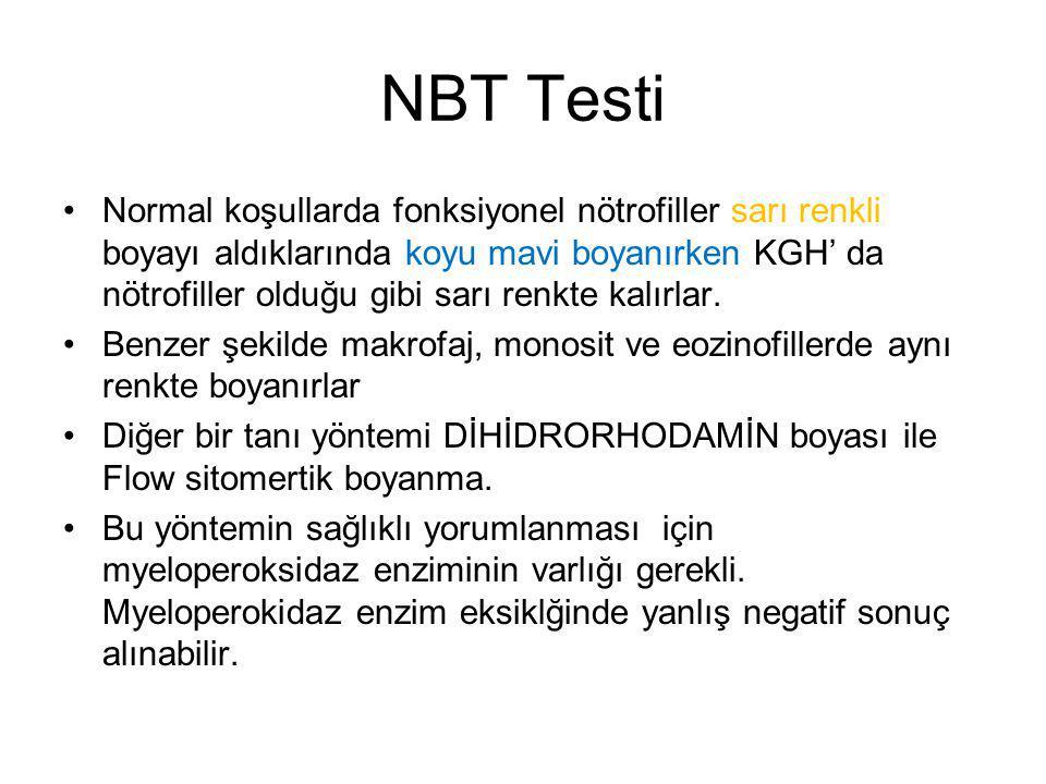 NBT Testi Normal koşullarda fonksiyonel nötrofiller sarı renkli boyayı aldıklarında koyu mavi boyanırken KGH' da nötrofiller olduğu gibi sarı renkte kalırlar.