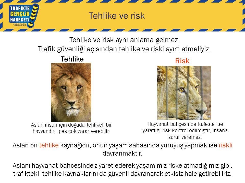 Tehlike ve risk Tehlike ve risk aynı anlama gelmez. Trafik güvenliği açısından tehlike ve riski ayırt etmeliyiz. Aslan insan için doğada tehlikeli bir