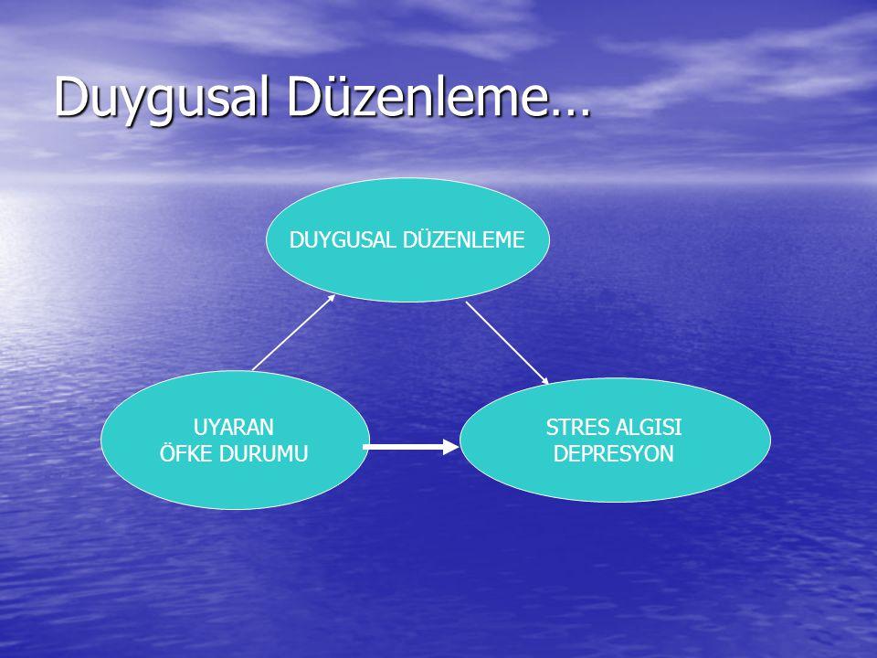 Duygusal Düzenleme… UYARAN ÖFKE DURUMU STRES ALGISI DEPRESYON DUYGUSAL DÜZENLEME