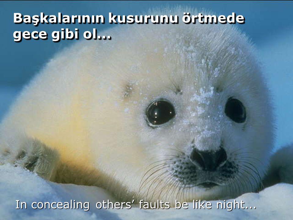 74 Başkalarının kusurunu örtmede gece gibi ol... In concealing others' faults be like night...