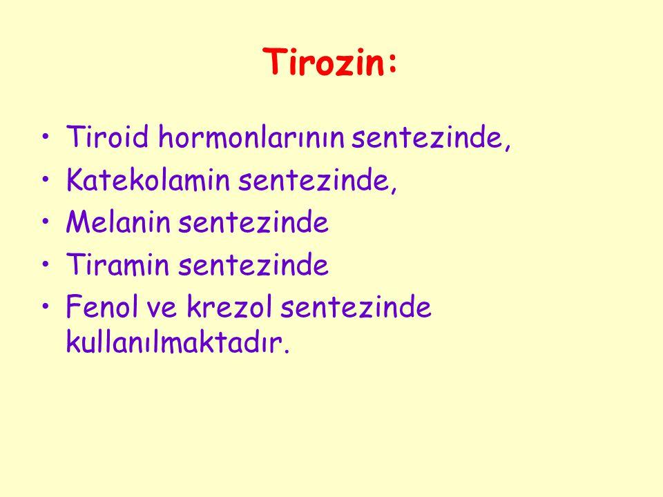 Tirozin: Tiroid hormonlarının sentezinde, Katekolamin sentezinde, Melanin sentezinde Tiramin sentezinde Fenol ve krezol sentezinde kullanılmaktadır.
