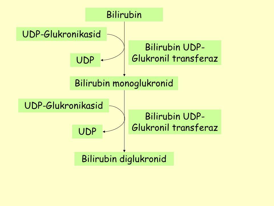 Bilirubin Bilirubin monoglukronid Bilirubin diglukronid UDP-Glukronikasid UDP UDP-Glukronikasid UDP Bilirubin UDP- Glukronil transferaz