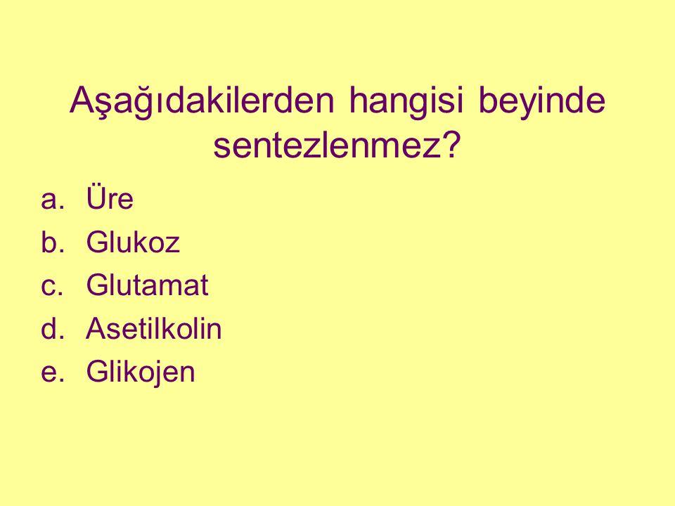 Aşağıdakilerden hangisi beyinde sentezlenmez? a.Üre b.Glukoz c.Glutamat d.Asetilkolin e.Glikojen